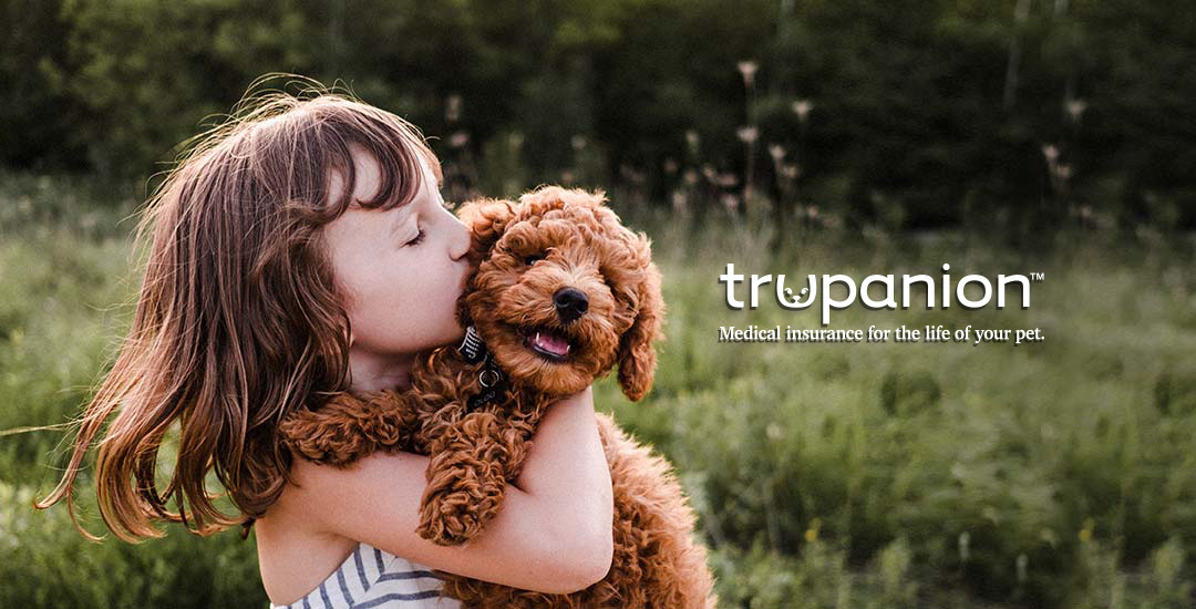 Trupanion - Medical insurance for the life of your pet.
